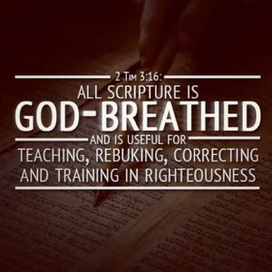 Study the Word 6